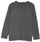 Eileen Fisher Plus Size Women's Round Neck Merino Sweater