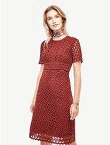 Ann Taylor Dresses Shopstyle