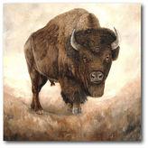Asstd National Brand Buffalo Canvas Wall Art