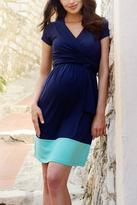 Seraphine Enja Nursing Dress