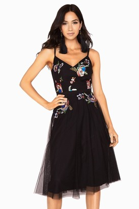 Little Mistress Hallie Sequin Embroidery Mesh Strappy Dress