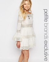 White Cove Petite All Over Lace Bell Sleeve Paneled Skater Dress