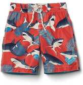 Gap Tropical sharks swim trunks