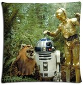 Anti-microbial Comfort Polyester - Cotton Floor Pillow Shell Cases Ewoks Zippered 16x16 inch 40x40 cm