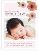 Minted New Born Poppy Birth Announcement Magnets