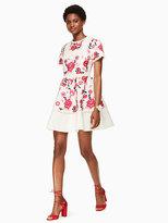 Kate Spade Briley dress