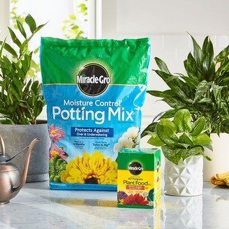 west elm Miracle-Gro Moisture Control Potting Mix & Water Soluble All Purpose Plant Food