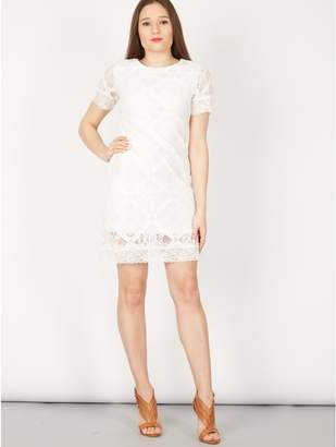 M&Co Izabel lace overlay shift dress