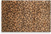 Fun Rugs Leopard Skin 5-Foot x 7-Foot 3-Inch Area Rug