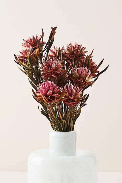 Anthropologie Dried Plumosum Bouquet