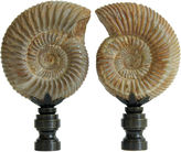 One Kings Lane Vintage Ribbed Ammonite Shell Lamp Finials, Pair