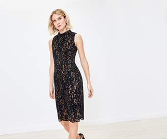 Oasis Velvet Lace Wiggle Dress