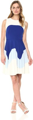 Taylor Dresses Women's Sleeveless Colorblock fit and Flare Dress
