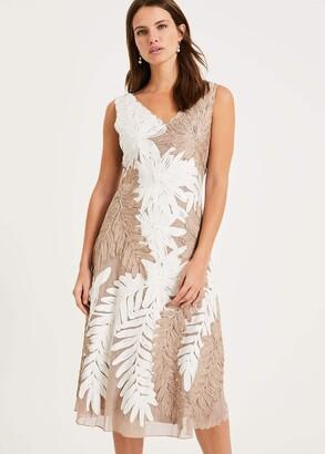Phase Eight Denise Tapework Lace Dress
