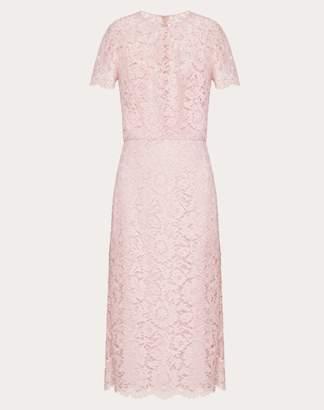 Valentino Heavy Lace Sheath Dress Women Pale Pink Cotton 41%, Viscose 39%, Polyamide 20% 38