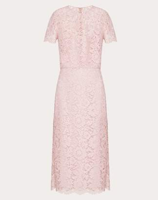 Valentino Heavy Lace Sheath Dress Women Pale Pink Cotton 41%, Viscose 39%, Polyamide 20% 40