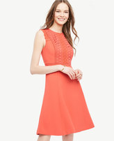 Ann Taylor Lace Trim Flare Dress