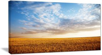"""Design Art Usa """"Wheat Field Under Summer Sky"""" Extra Large Wall Art Landscape, 32""""x16"""""""
