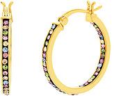 Bliss Pink Crystal & Gold Hoop Earrings