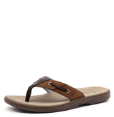 Sperry Baitfish Thong Brown/Buc Brown