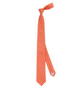 Thomas Pink Gingham Check Skinny Tie