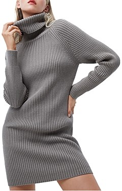 French Connection Katerina Turtleneck Sweater Dress
