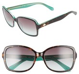 Kate Spade 'ayleens' 56mm Sunglasses