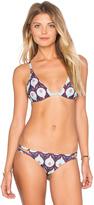 Tavik Vivienne Bikini Top