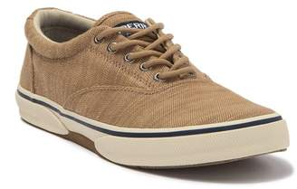 Sperry Halyard CVO Lace-Up Sneaker
