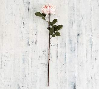 Pottery Barn Faux Rose Stem - Dusty Pink