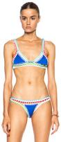 Kiini Tuesday Poly-Blend Bikini Top in Blue.