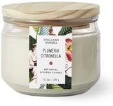 Williams-Sonoma Williams Sonoma Citronella Multi-Wick Plumeria Candle