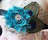 Leiothrix Headband Peacock Feather & Rehinestone for Children and Baby Apply to Party Birthday Costume