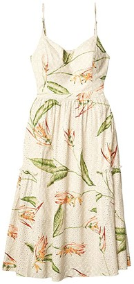 BCBGMAXAZRIA Printed Eyelet Dress (Natural Combo) Women's Clothing