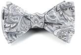 The Tie Bar Platinum Organic Paisley Bow Tie