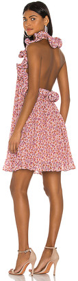 AMUR Mimi Dress