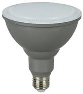 PAR38 Weatherproof Light