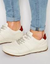 Boxfresh Ackworth Sneakers