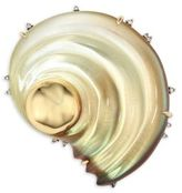 Alexis Bittar Lucite Sculptural Shell Pin
