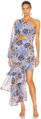 Alexis Sabetta Dress in Blue Floral   FWRD