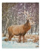 Fashion World Stag Fleece Throw with Sherpa Back