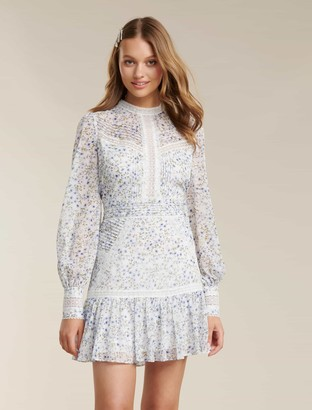Ever New Maddison Petite Trim Splice Dress