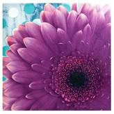 Nobrand No Brand Vibrant Violet Gel Coat Canvas