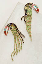 Elizabeth Cole Lorikeet Drop Earrings