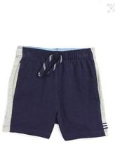 Splendid Infant Boy's Sport Shorts