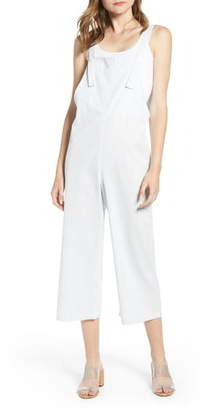 Bishop + Young Stripe Overalls