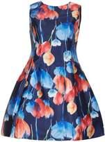 Izabel London Tulip Field Vintage Dress