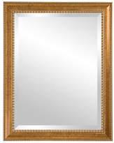 """C&C Reflections Irene Oversize Mirror - 32"""" x 44"""