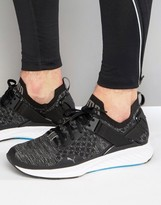 Puma Running Ignite Evoknit Lo Trainers In Black 18990401