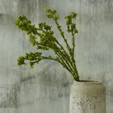 Graham and Green Faux Moss Spray